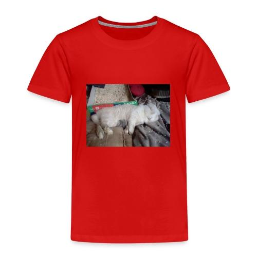 26814955 1940292332897760 3360658952995218362 n - Kinder Premium T-Shirt