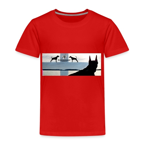FBtausta - Lasten premium t-paita