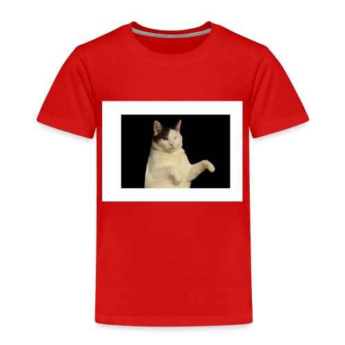 Kitty cat - Kinderen Premium T-shirt