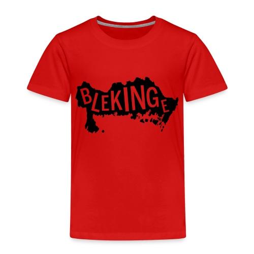 Blekingekarta - Premium-T-shirt barn