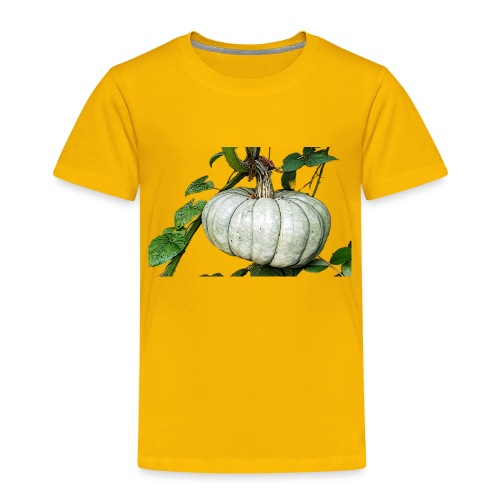 Kürbiszeit - Kinder Premium T-Shirt