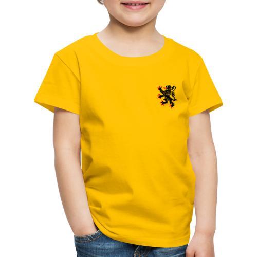 Nord-Pas-De-Calais - T-shirt Premium Enfant