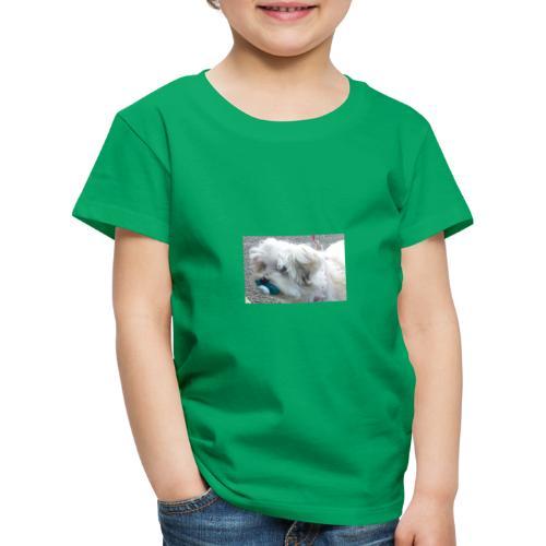 dog with dummy - Kids' Premium T-Shirt