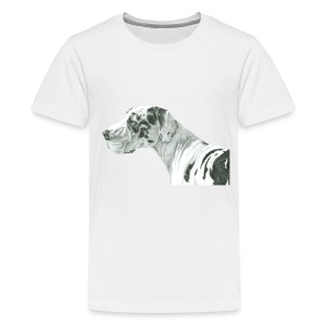 grand danios harlequin - Teenager premium T-shirt