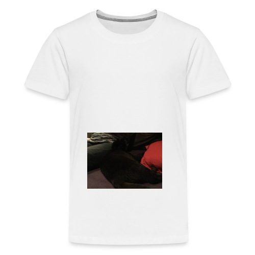 image - Teenager Premium T-Shirt