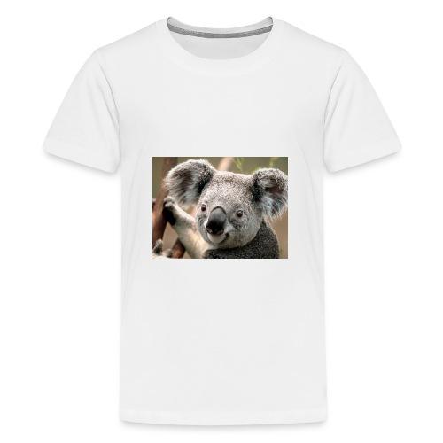 Koala - T-shirt Premium Ado
