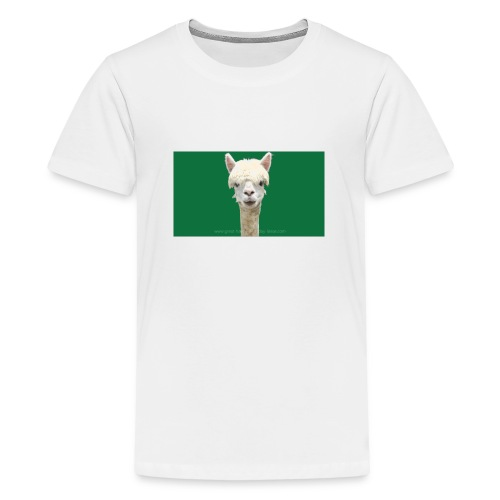 maxresdefault - Teenage Premium T-Shirt
