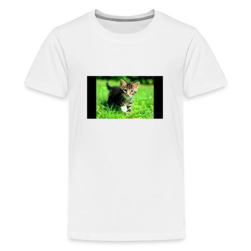 kittys - Teenager Premium T-shirt