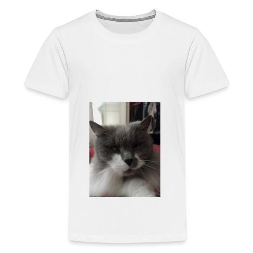Moody cat - Teenage Premium T-Shirt