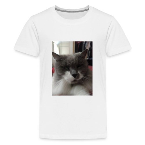 Moody cat - Teenage Premium T-Shirt