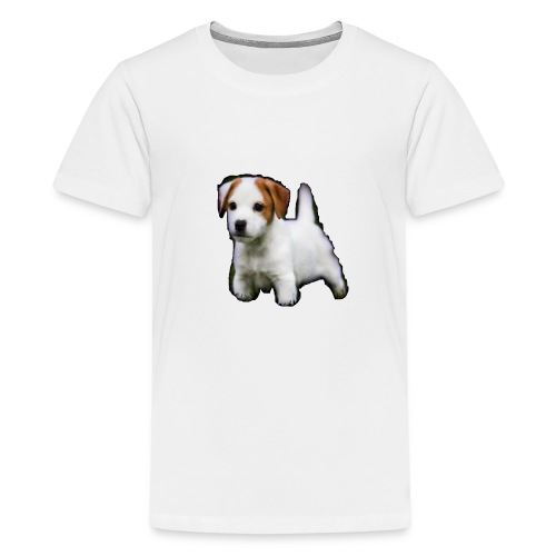 Hunde martch 2 - Teenager Premium T-Shirt