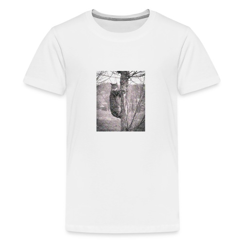Grumpy Koala Katze im Baum - Teenager Premium T-Shirt