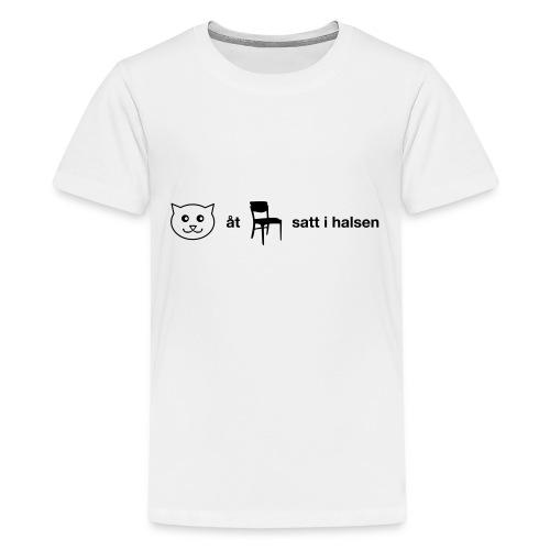 Katt åt stol - Premium-T-shirt tonåring