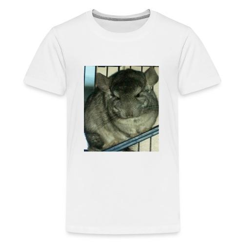 morko - Teinien premium t-paita