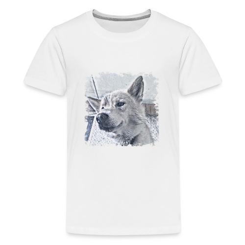 Flash - Teenager Premium T-Shirt