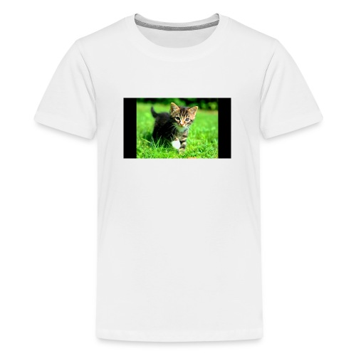 kittys - Teenager Premium T-shirt
