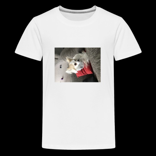 Chihuahua - Teenage Premium T-Shirt
