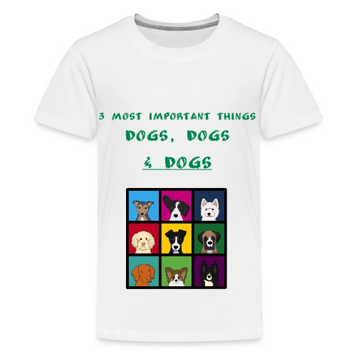 3 most important things - - Teenage Premium T-Shirt