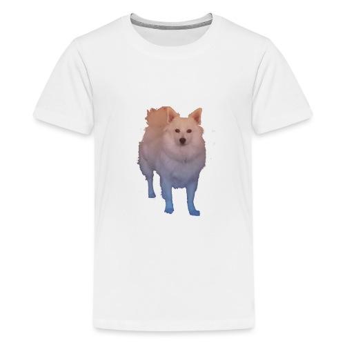 Coloured Pom png - Teenager Premium T-Shirt