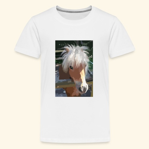 shetland - Teenager Premium T-Shirt