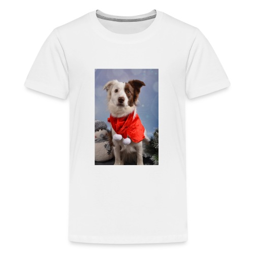 DSC_2058-jpg - Teenager Premium T-shirt