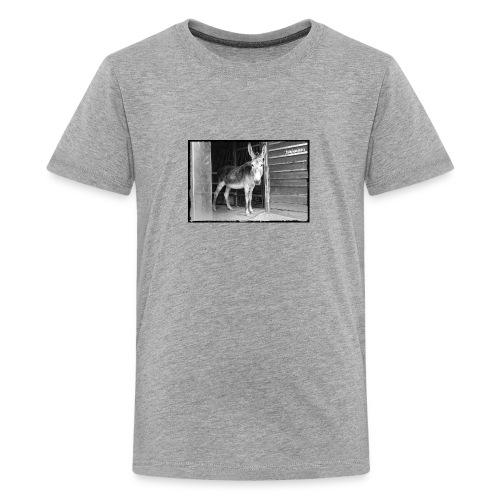 Zickenstube Esel - Teenager Premium T-Shirt