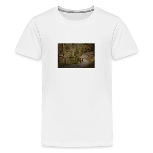 1.11.17 - Teenager Premium T-Shirt