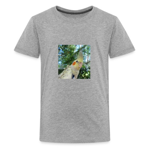 ninjanen - Teinien premium t-paita