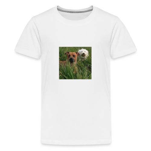15965945 10154023153891879 8302290575382704701 n - Teenager Premium T-shirt