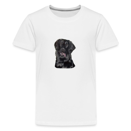 flatcoated retriever pastels - Teenager premium T-shirt