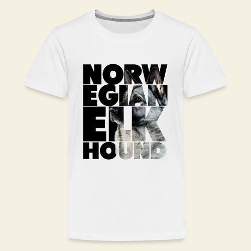 NASSU Norjanharmaa 2 - Teinien premium t-paita