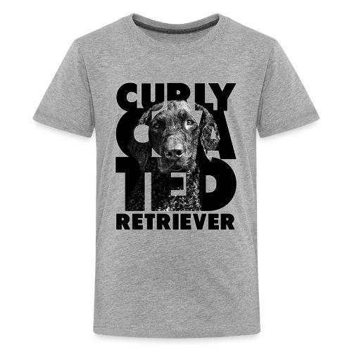 Curly Coated Retriever II - Teinien premium t-paita
