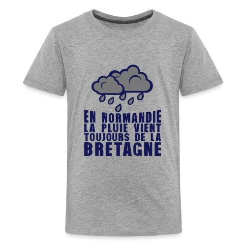 en normadie pluie vient bretagne nuage - T-shirt Premium Ado