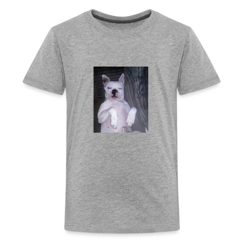 chillin' - Teenage Premium T-Shirt