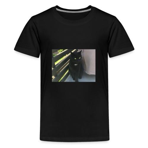 IMG 3327 - Premium T-skjorte for tenåringer