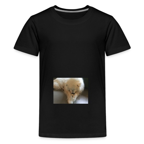 Olle - Teenager Premium T-shirt