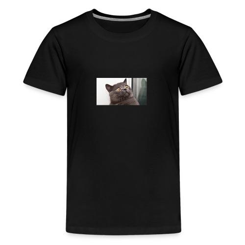 Funny cat tshirt - Teenage Premium T-Shirt