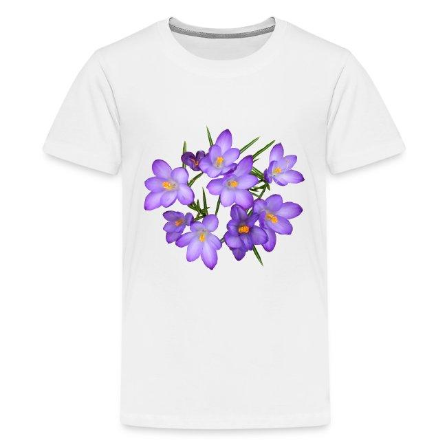 Krokus Frühling Blume