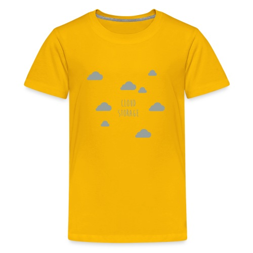 Cloud Storage - Teenager Premium T-Shirt