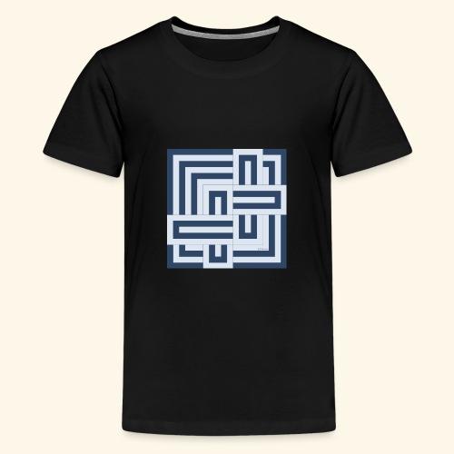 12017 - Camiseta premium adolescente