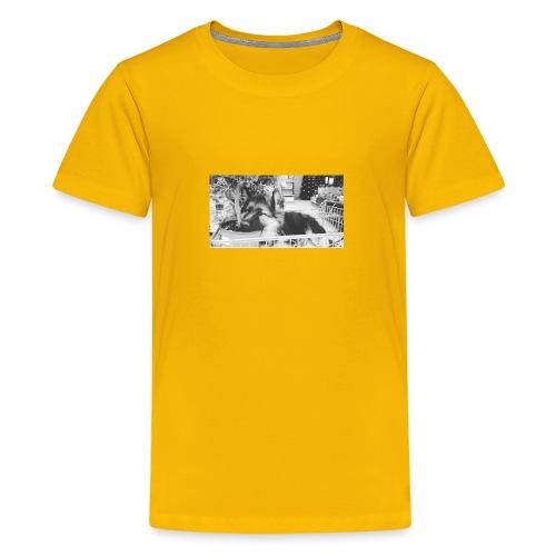 Zzz - Teenager Premium T-shirt