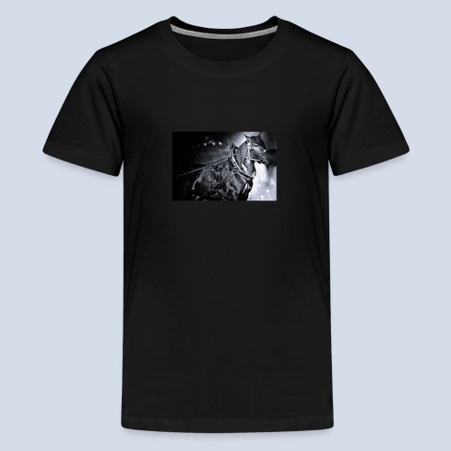 Noriker - Teenager Premium T-Shirt