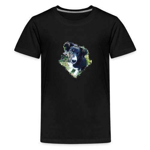 colliegermanshepherdpup - Teenage Premium T-Shirt