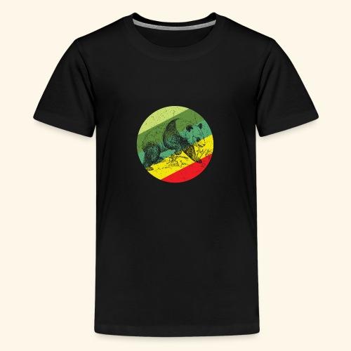 Chinese Panda Retro - Teenage Premium T-Shirt