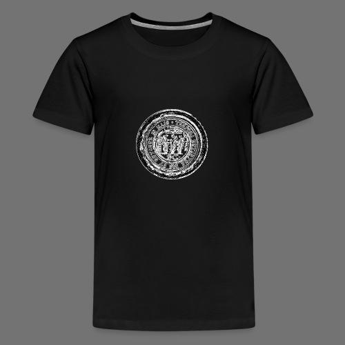 Tempora mutantur nos et mutamur vuonna Illis - Teinien premium t-paita