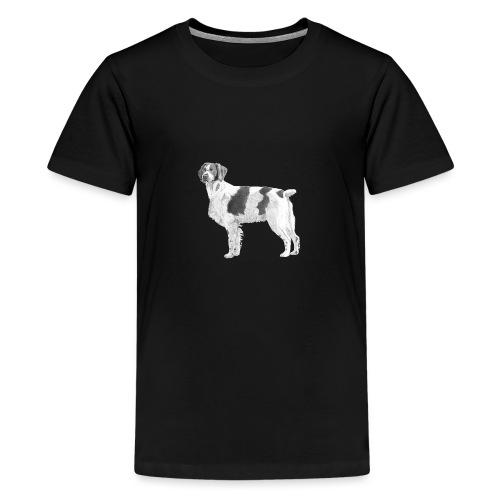 Brittany - Breton - Teenager premium T-shirt
