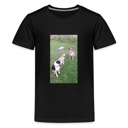DID SOMEONE SAY SOMTHING - Teenage Premium T-Shirt