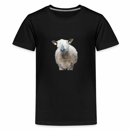 Durchblick! Wo Wolle du hin, Schaf? - Teenager Premium T-Shirt