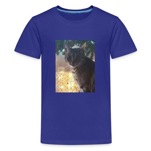 Christmas cat - Teenage Premium T-Shirt