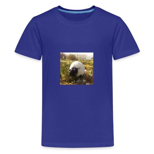 Sheep in Ireland - Teenager Premium T-Shirt